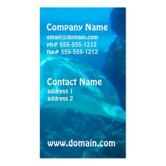 Tarjetas de visita subacuáticas del delfín