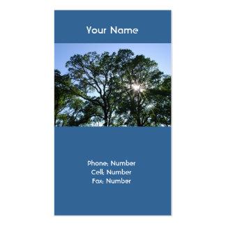 Tarjetas de visita Sunlit del árbol