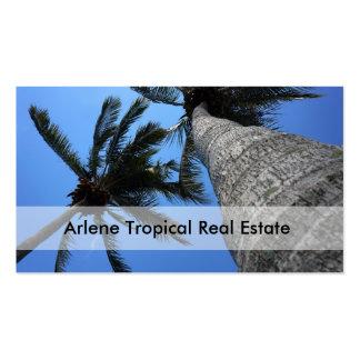 Tarjetas de visita tropicales de las propiedades