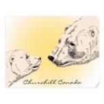 Tarjetas del arte del oso polar de la postal de Ch