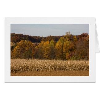 Tarjetas del campo de maíz del otoño