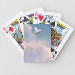 tarjetas del cerdo del vuelo barajas