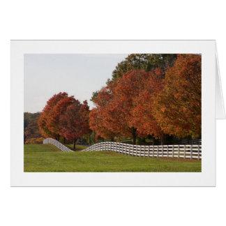 Tarjetas del color del otoño