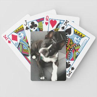 Tarjetas del compinche de Boston Terrier Barajas De Cartas