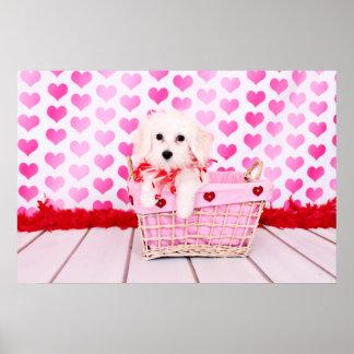 Tarjetas del día de San Valentín - algodón de Tule Póster