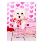 Tarjetas del día de San Valentín - algodón de Tule Tarjetas Postales
