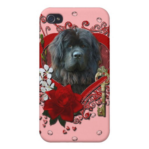 Tarjetas del día de San Valentín - llave a mi cora iPhone 4 Carcasas