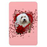 Tarjetas del día de San Valentín - llave a mi cora Iman Flexible
