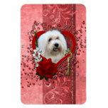 Tarjetas del día de San Valentín - llave a mi cora Imán Rectangular