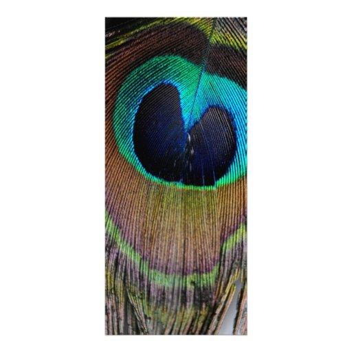 Tarjetas del estante de la pluma del pavo real plantillas de lonas