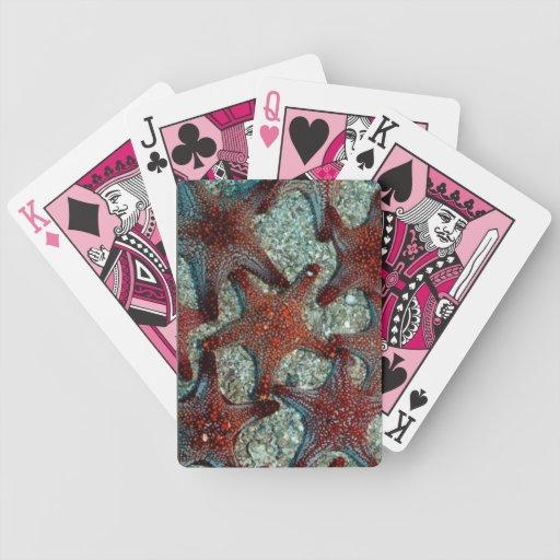 tarjetas del juego de las estrellas de mar barajas de cartas