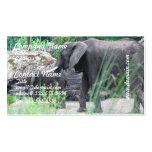 Tarjetas del negocio familiar del elefante tarjetas de visita