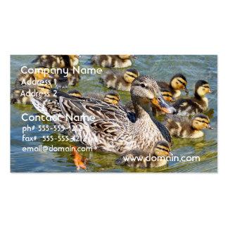 Tarjetas del negocio familiar del pato tarjetas de visita