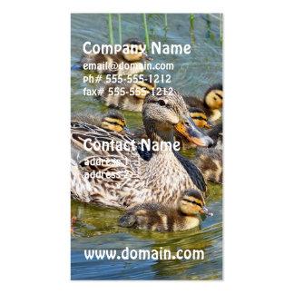 Tarjetas del negocio familiar del pato tarjeta personal