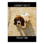 Tarjetas del perro del Bassett