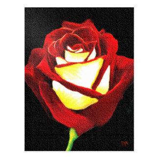 Tarjetas del rosa rojo y blanco postal