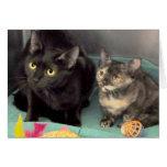 Tarjetas del saludo/de nota del gato negro/del gat