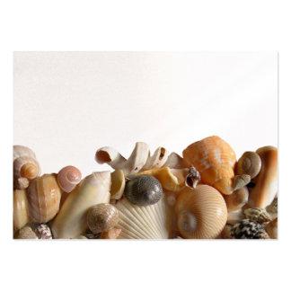 Tarjetas en blanco del lugar de los Seashells Tarjetas De Visita Grandes