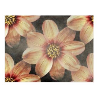 Tarjetas florales en colores pastel apacibles postal