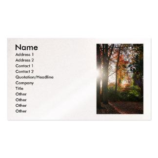 Tarjetas ligeras brillantes del negocio/del perfil tarjetas de visita