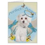 Tarjetas perfectas maltesas del ángel