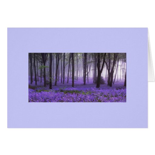 tarjetas púrpuras del zensuality del bosque