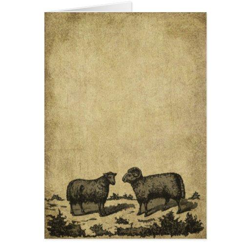 Tarjetas remilgadas de las ovejas y de una nota de