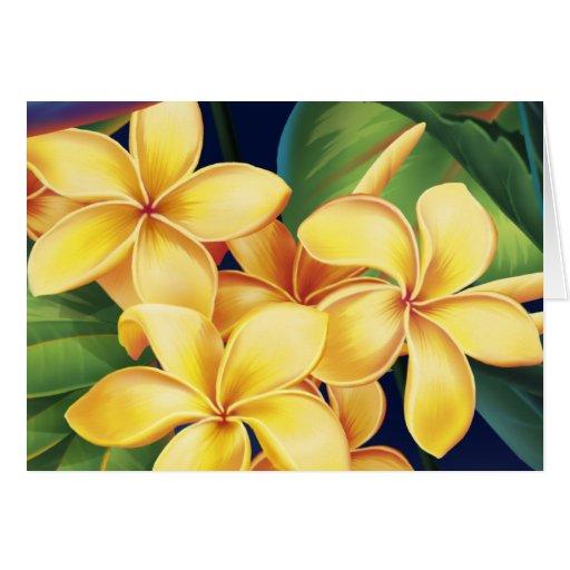 Tarjetas tropicales del Plumeria del paraíso
