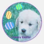 Tarjetas y regalos del perrito de Pascua del golde Pegatinas