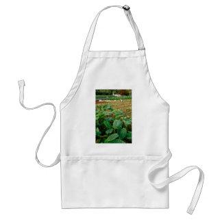Taro field adult apron