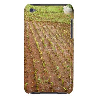 Taro field iPod Case-Mate case