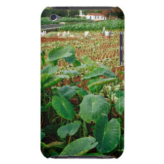 Taro field iPod touch cover