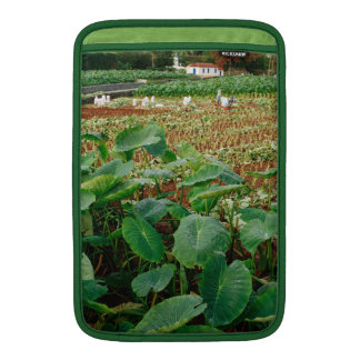 Taro field MacBook sleeve