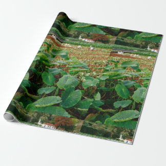 Taro field wrapping paper