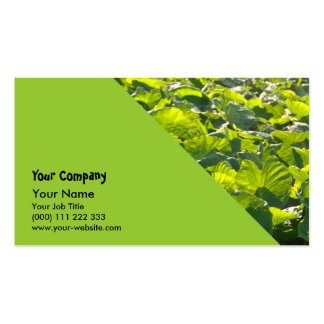 Taro plantation Double-Sided standard business cards (Pack of 100)