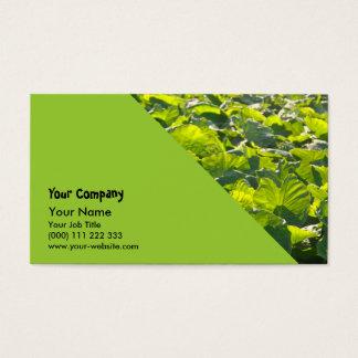 Taro plantation business card
