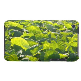 Taro plantation iPod touch case