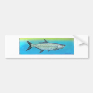 Tarpon Bumper Sticker