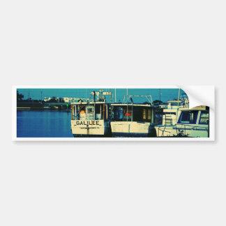 Tarpon Dock Bumper Sticker