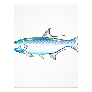Tarpon Ocean Gamefish illustration vector Letterhead