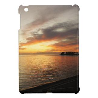 Tarpon Sky iPad Mini Covers