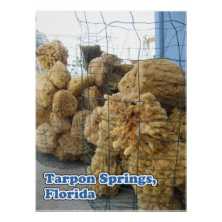 Tarpon Springs Sponges Canvas Print