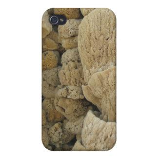Tarpon Springs Sponges iPhone 4 Case 2