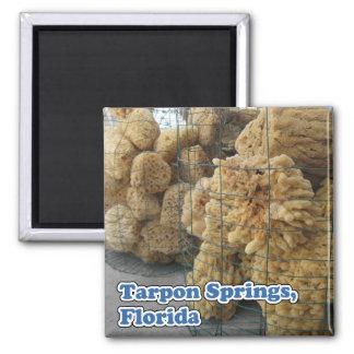 Tarpon Springs Sponges Magnet