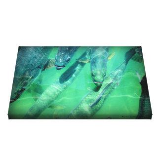 Tarpons - Key West Canvas Print