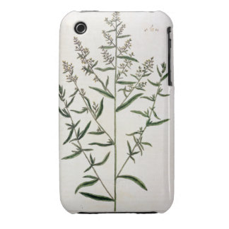 Tarragon, plate 116 from 'A Curious Herbal', publi iPhone 3 Case-Mate Case