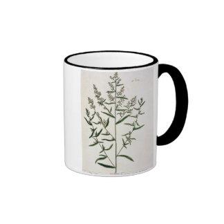 Tarragon, plate 116 from 'A Curious Herbal', publi Ringer Coffee Mug