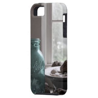 Tarro azul iPhone 5 carcasas