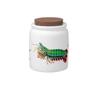Tarro colorido del caramelo de los crustáceos jarras para caramelos