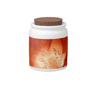 Tarro de galletas rojo de la amapola del placer platos para caramelos